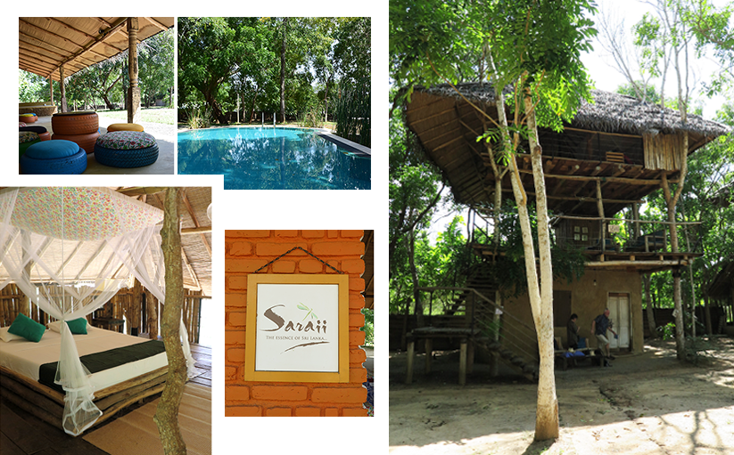 Our Stay At The Saraii Village Eco Hotel Sri Lanka